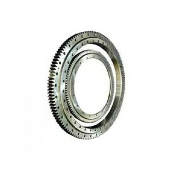 IKO Full Complement Cylindrical Roller Bearing Nas5040 Vuur SL045040 Nnf5040 Ada-2lsv